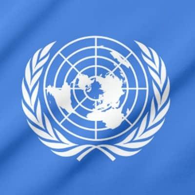 The Head of UN flag